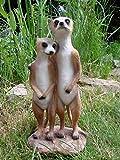 Süsses Erdmännchen Paar Figur Gartenfigur Tierfigur
