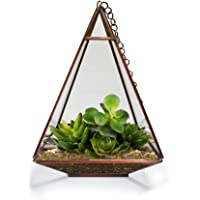 TrustBasket Triangular Tower Terrarium for Small Indoor Plants
