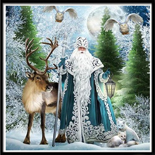Pandaie New 5D Diamond Painting Kit -Dream Snow Day- DIY Crystals Diamond Rhinestone Painting Pasted Paint by Number Kits Cross Stitch Embroidery Decor Wall Stickers & Murals ()