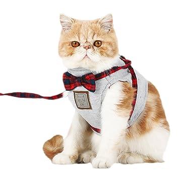 Yonfan Arnés para gatos, chaleco y correa a prueba de escape, para ...