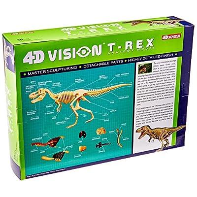 Famemaster 4D Vision T-Rex Anatomy Model: Toys & Games