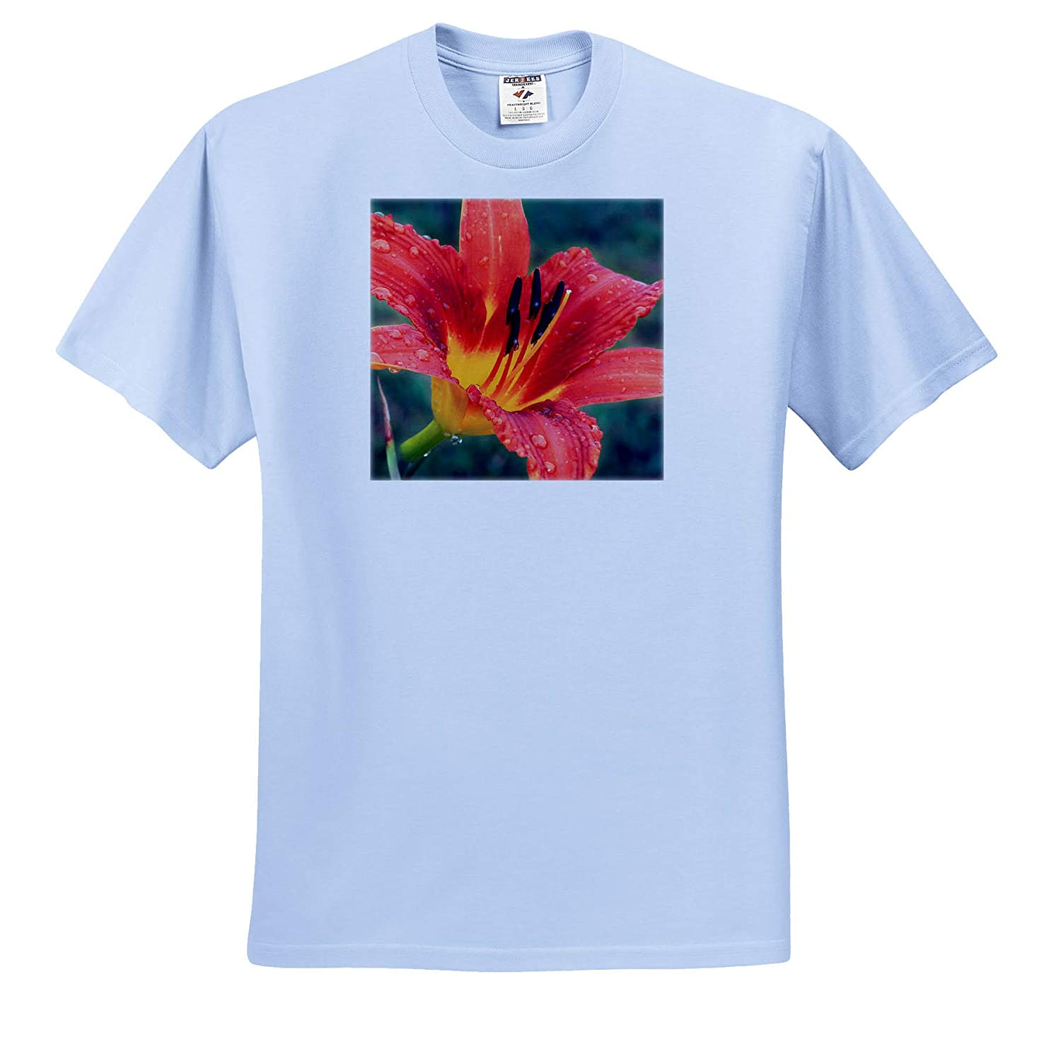 3dRose Stamp City Flowers - T-Shirts Photograph of an Orange Tiger from Our Our Garden After The rain