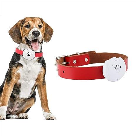SAKURAM Mini Localizador GPS GPS Tracker para Mascotas Perros ...