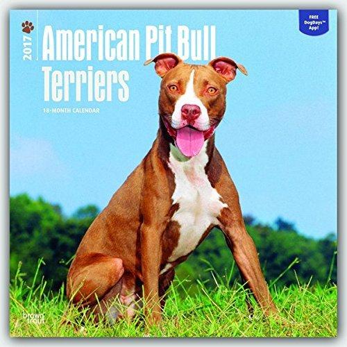 American Pit Bull Terrier 2017 Wall Calendar