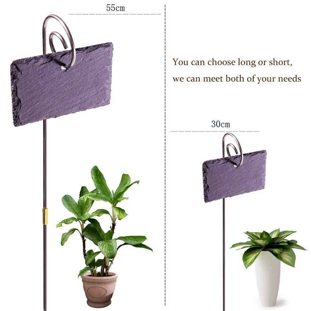 MINSHAM 6 /étiquettes pour Plantes en Ardoise tiges en Acier Inoxydable et 2 Crayons /à Craie