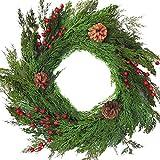 Winter Door Wreath Artificial Cedar Wreath for Christmas Natural Looking Evergreens Red Berries Pine Cones Will Fit in Between Storm Doors 22 Inch Diameter 3.5 Inches Deep