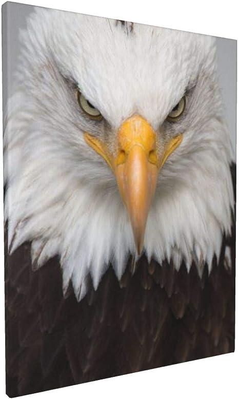 Animal Canvas Set Bald Eagle Wall Art Animal Wall Print Bald Eagle Canvas Set Bald Eagle Poster Animal Wall Decor Animal Poster