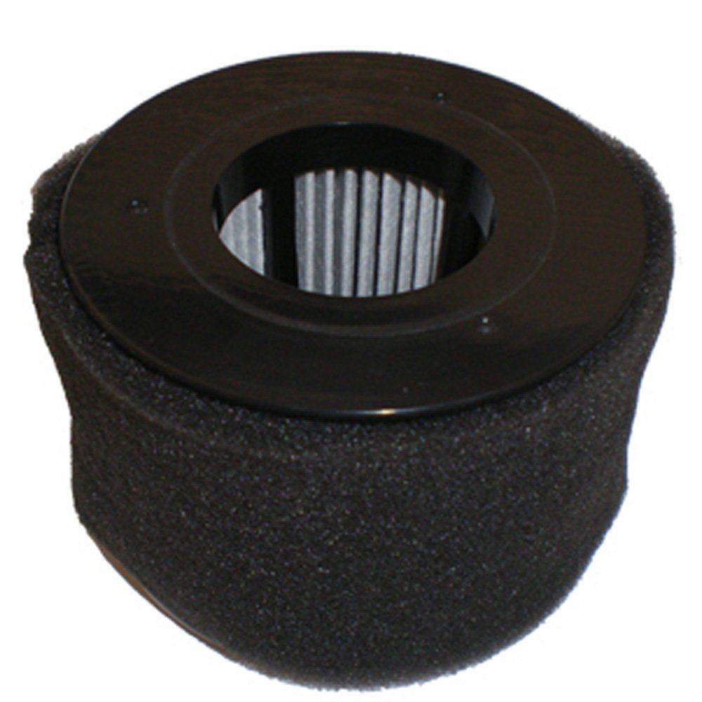 Bissell 54A2 Filter, Dirt Cup 81L2 Series Pleated W/Foam Floor