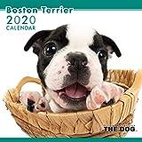 THE DOG カレンダー ボストン・テリア 2020年