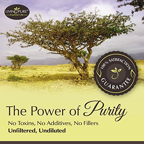 Living Pure Frankincense Essential Oil 100 Natural