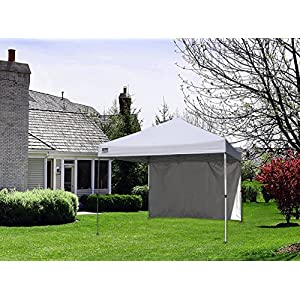 Quik Shade Commercial C100 10'x10' Instant Canopy with Wall Panel - White