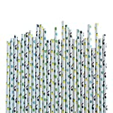 Tropical Paper Straws with Toucan Straws, Tropical Leaves Straws, and Pineapple Straws, made in America by REVEL & Co, package of 50 straws