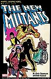 Marvel Graphic Novel #4: The New Mutants