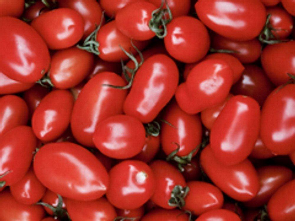 20 Samen exotic-samen Mini Roma-Tomate Cherry Roma-Tomate