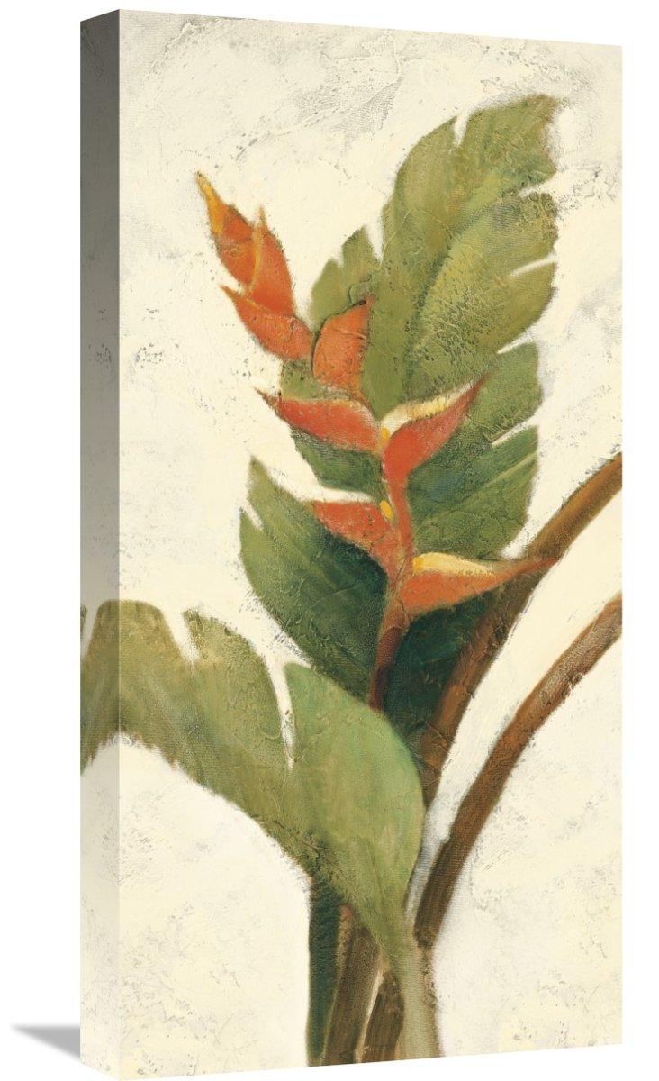 Global GalleryAlbena Hristova Halconia Blossom on White Giclee Stretched Canvas Artwork 12 x 24