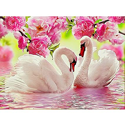 Image Unavailable. Image not available for. Color  5D DIY diamond  embroidery swan lover diamond painting Cross Stitch full drill Rhinestone  mosaic ... 8301569a44ed