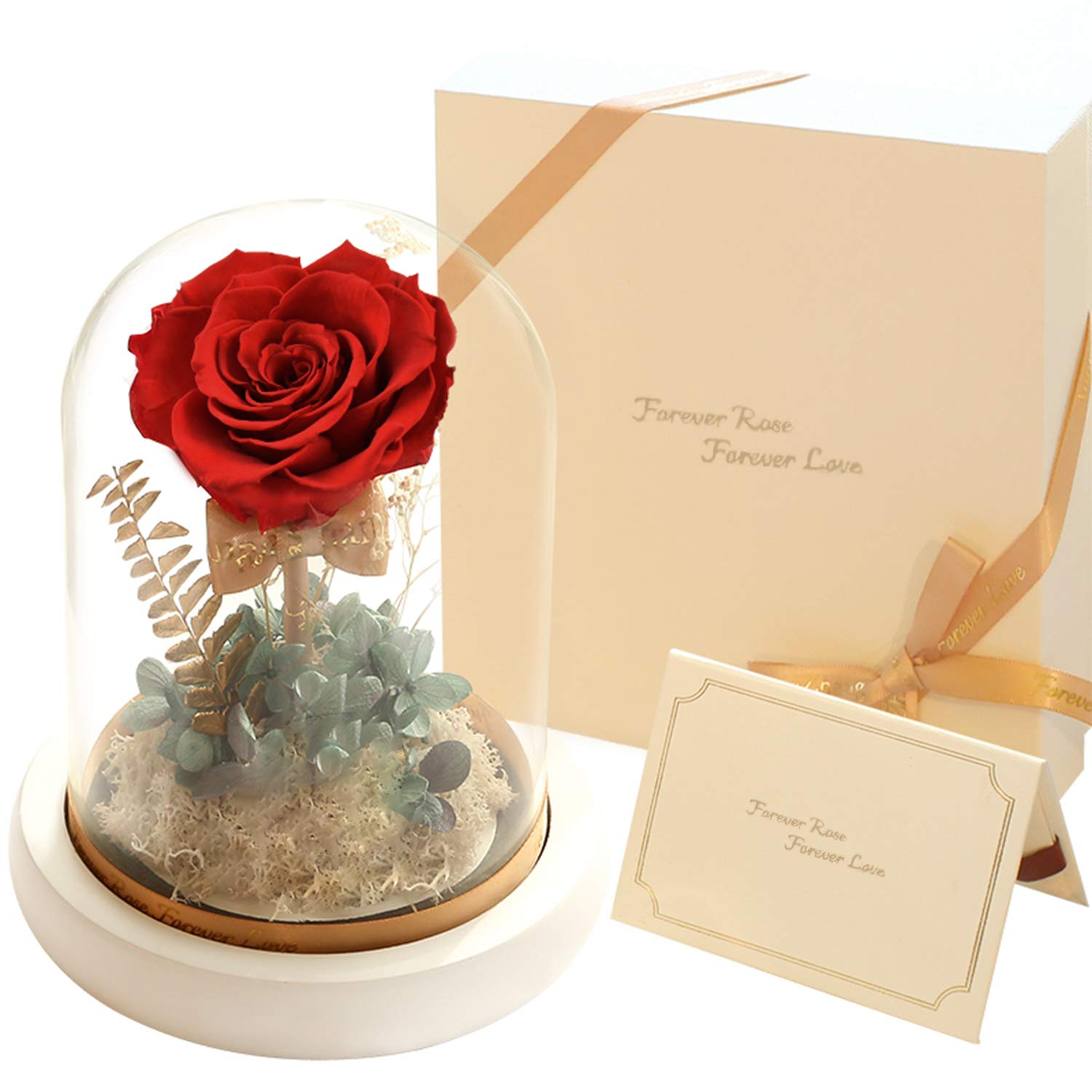 Amazon New Forever Eternity Stunning Preserve Real Rose With