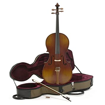 Amazon.com: Deluxe para violonchelo 4/4 con estuche por ...