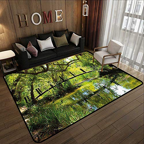 (Floor mats for Trucks,Nature,Photo of a Forest with Bridge Lake Wilderness Woods Greenery Spring Rural Scenery,Green Brown 78.7