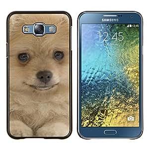 TECHCASE---Cubierta de la caja de protección para la piel dura ** Samsung Galaxy E7 E700 ** --Pomerania perro amarillo de piel canina mascotas