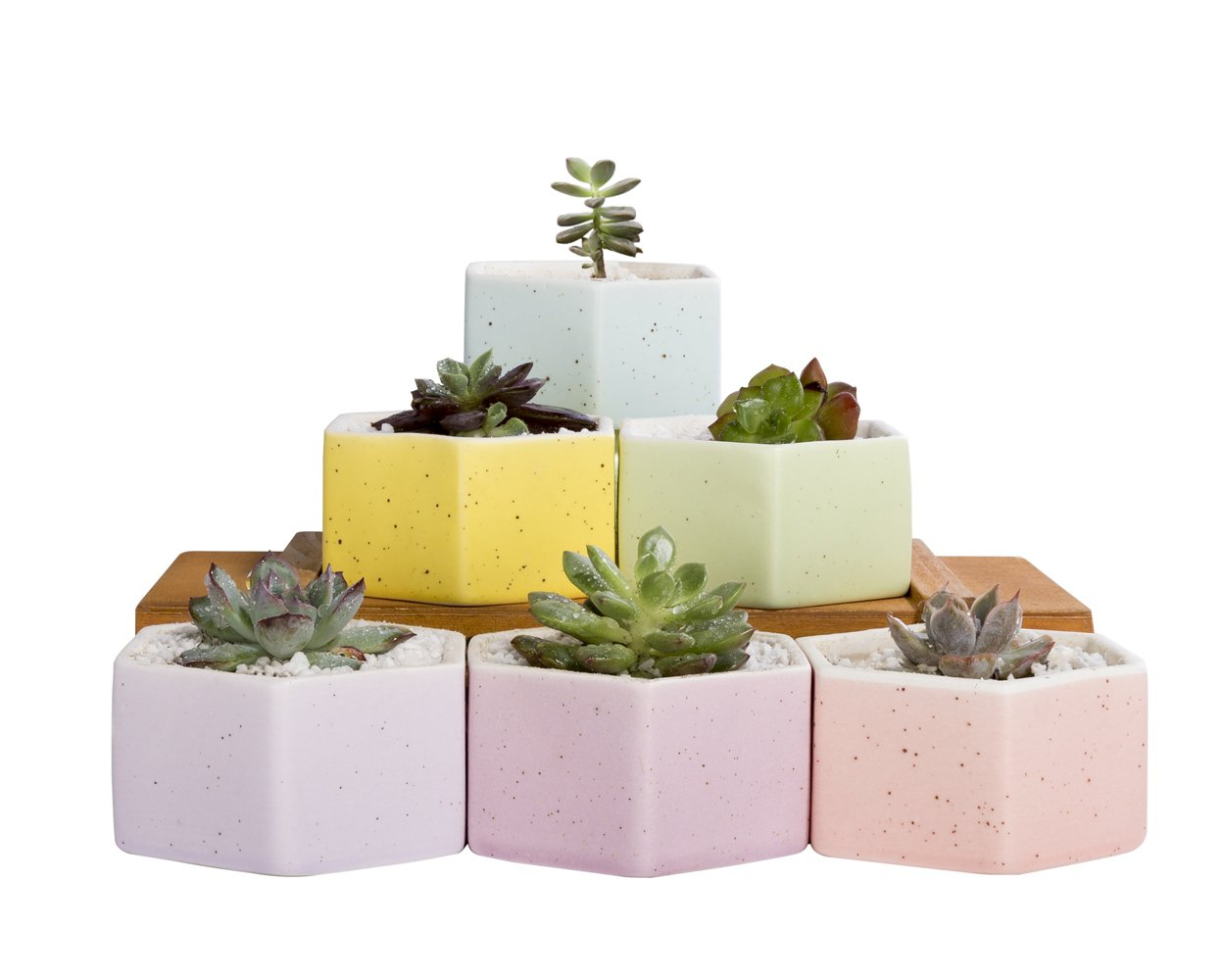 Mkono Set Of 6 Ceramic Small Plant Pots 3 Inches Succulent Planters Indoor, Hexagon by Mkono