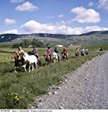 People riding horses south of Iceland 30x40 photo reprint