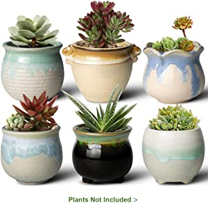 FairyLavie 3.5 Inch Succulent Pots, Succulent Planter Plant Flower Pot for Indoor Outdoor Plants, Perfect for Home Office Decor and Unique Gift for Family Friends Colleague, Set of 6