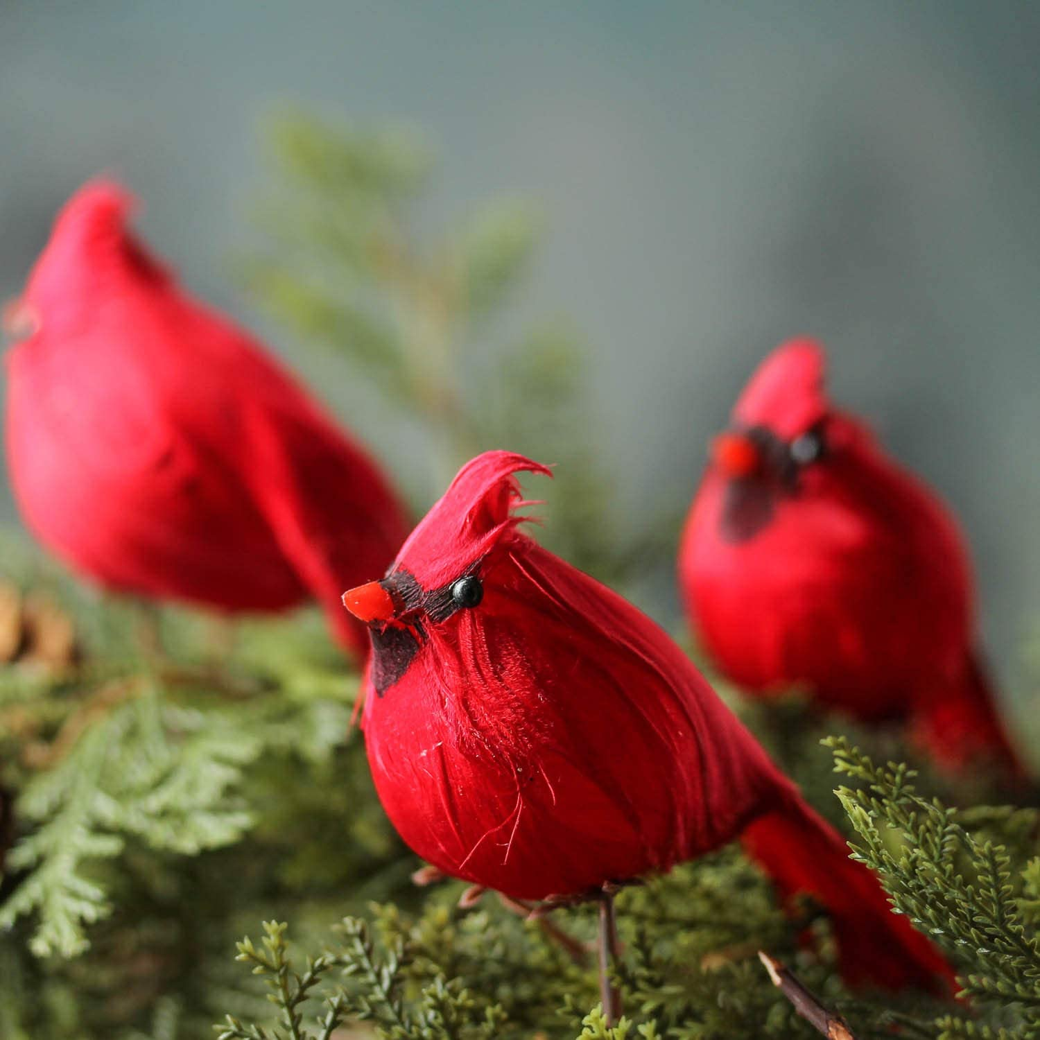 Factory Direct Craft Package of 12 Bright Red Artificial Cardinal Birds with Clips for Christmas Tree Ornaments and Home Décor and Nature Displays