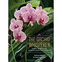 The Orchid Whisperer: Expert Secrets for Growing Beautiful Orchids