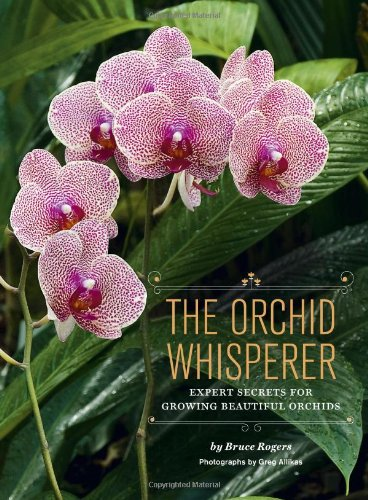 """Orchids can bloom year after year. In this essential guide, Bruce Rogers, """"The Orchid Whisperer"""", shares his expert tips from more than three decades of breeding and growing orchids. The book demystifies the growing process and features more than 100..."""