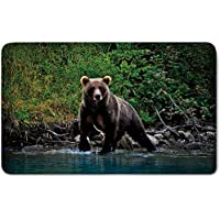Memory Foam Bath Mat,Cabin Decor,Grizzly Brown Bear in Lake Alaska Untouched Forest Jungle Wildlife Image DecorativePlush Wanderlust Bathroom Decor Mat Rug Carpet with Anti-Slip Backing,Green Brown B