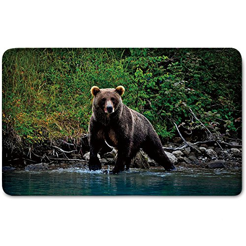 Memory Foam Bath Mat,Cabin Decor,Grizzly Brown Bear in Lake Alaska Untouched Forest Jungle Wildlife Image DecorativePlush Wanderlust Bathroom Decor Mat Rug Carpet with Anti-Slip Backing,Green Brown B by iPrint