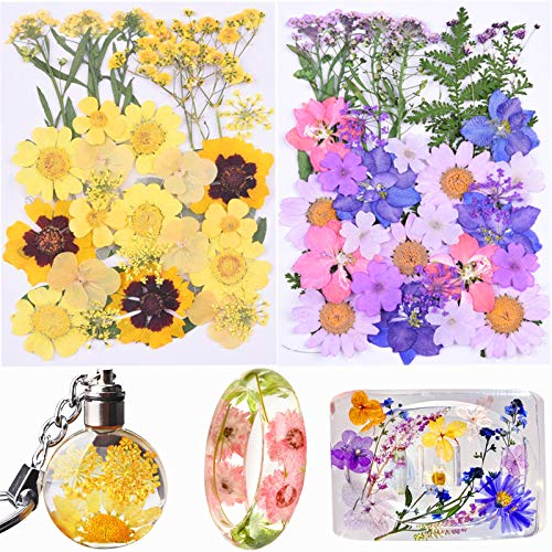 67 Pieces Dried Flowers for Resin Real Dried Pressed Flowers and Leaves, Mixed Multiple Resin Flowers Dried Flowers Colorful Daisy, Narcissus for Resin Jewelry Making,Candle, Nail Beauty and More