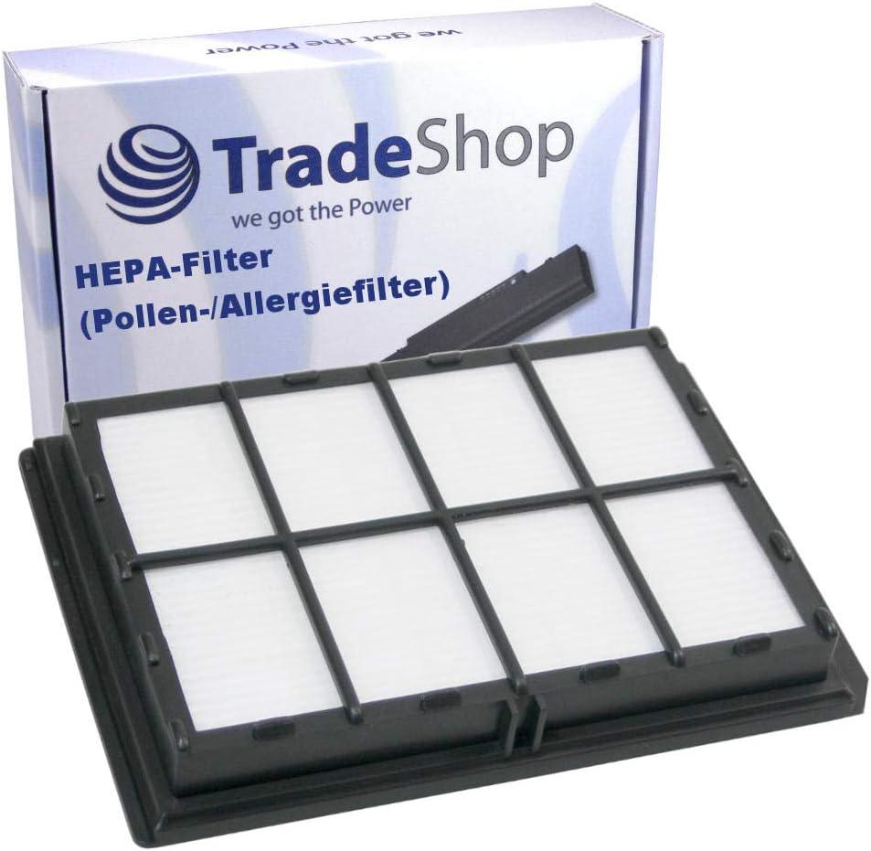 Filtro HEPA para Kärcher VC 5200 VC 5300 VS5KC02/06 VS5KC02AU/06 ...