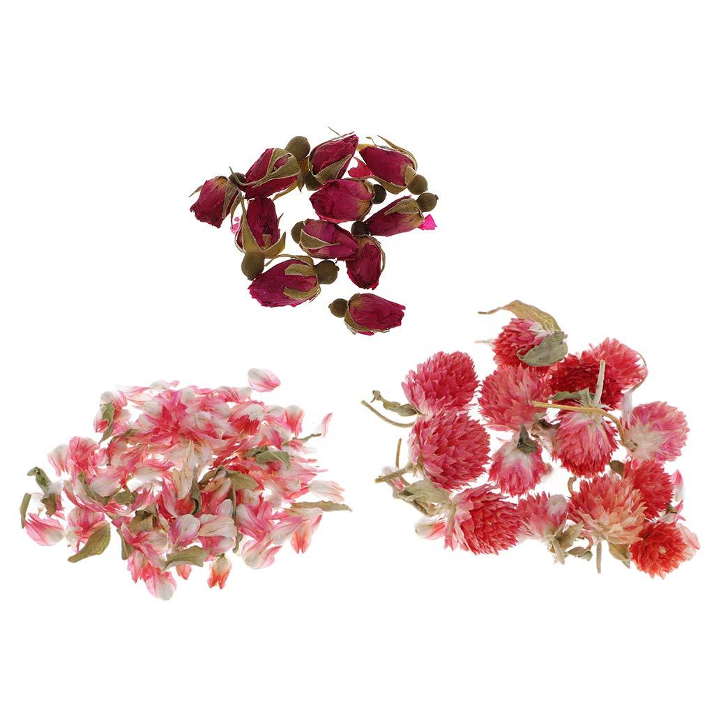 Baoblaze 8g Bulk Fiori Essiccati Naturali Per Candela Che Fa Regalo Amarena Di Rose Globe