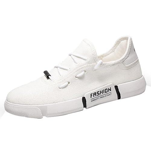 d188f3f629 Scarpe Moda da Donna, Sonnena Sneakers Basse Traspiranti Piatte Stringate con  Lacci Scarpe Casual Esecuzione Scarpe Rotonde Scarpe Sportive da Uomo  Running ...