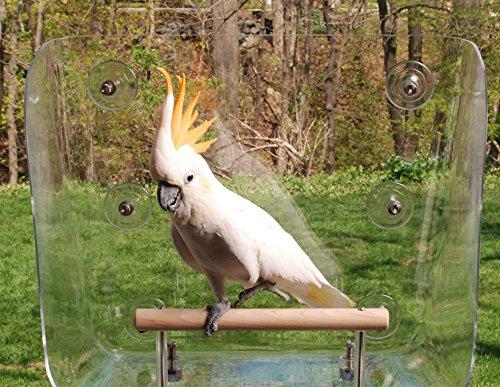 Your Pet Bird's Favorite Window Seat (Large)
