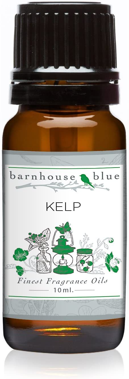 Barnhouse Blue - Kelp Premium Fragrance Oil - Scented Oil - 10ml