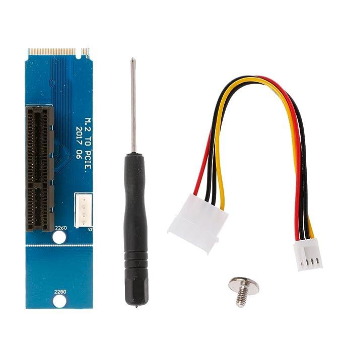 Amazon.com: 4pcs NGFF M.2 a PCI-E, Macho a Hembra, 4-Slot ...