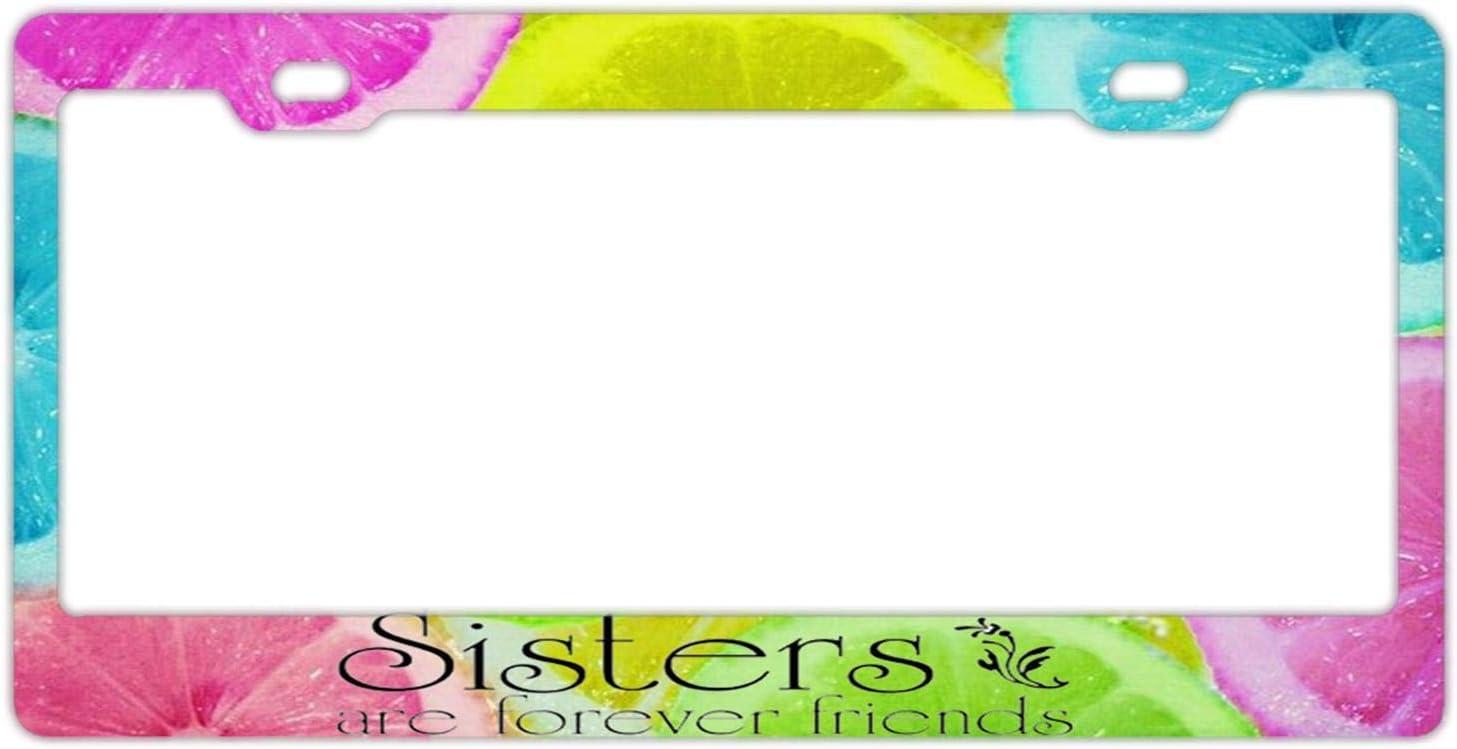 License Plate Frame Stainless Steel Metal License Plate Frame Women License Plate Holder Auto Car US Standard
