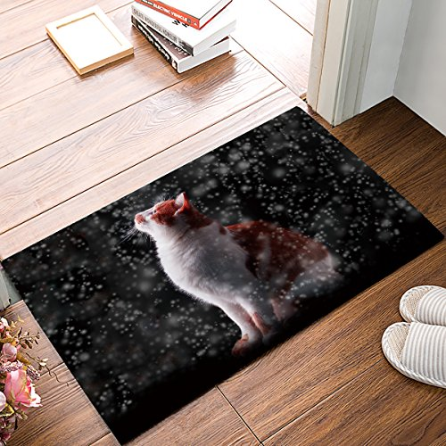 Doormat Hanging Cat Look Up Drifting Snow Home Things For The Door Of Bedroom Living Room Decor By Hostline (Snow Drifting)
