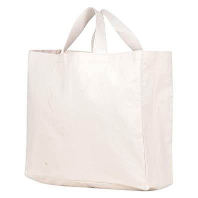381207b406 Ultralite Non Woven Fabric 17.5 L Off White Foldable Carry Bag (Off white)