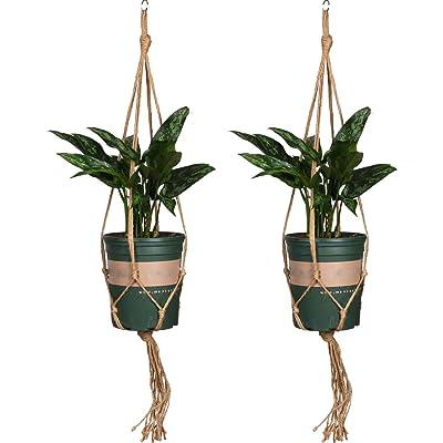 ThreeH Plant Hangers 2 Pack Hanging Net Indoor Plant Holder Outdoor Plant Flower Pot Hanging Basket 4 Legs Hanger for Home Garden Decorations: Home & Kitchen