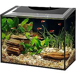 Aqueon Ascent LED Frameless Aquarium Kit 10 Gallon