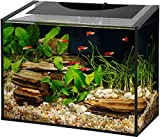 Aqueon Ascent LED Frameless Aquarium Kit 10 Gallon
