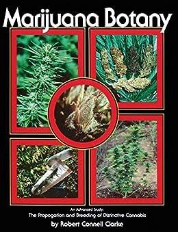 Marijuana Botany: An Advanced Study: The Propagation and Breeding of Distinctive Cannabis by [Clarke, Robert Connell]