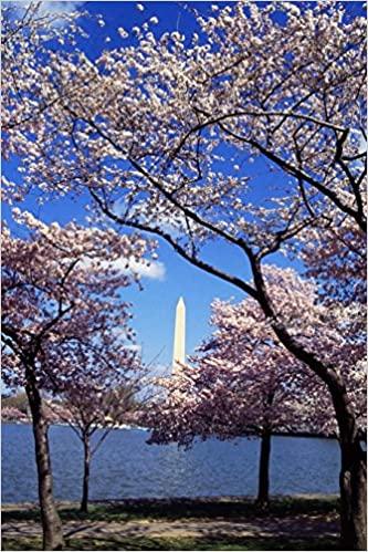 A View of the Washington Monument Through the Cherry Blossoms Journal: 150 Page Lined Notebook/Diary