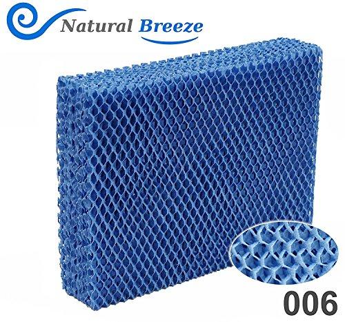 natural air filter - 5
