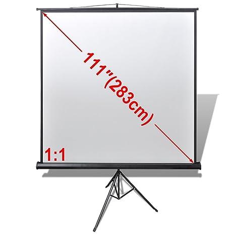 vidaXL Pantalla de proyección Manual Soporte de Altura Ajustable 200 x 200 cm