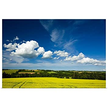 amazon ジョン シルベスターポスター印刷entitled cumulus clouds over